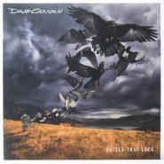 David Gilmour [ Pink Floyd] – Rattle That Lock Columbia Vinyl wie neu
