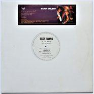 """Deep Swing – In The Music 12"""" Vinyl NM Generate"""