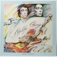Steve Hackett ‎– Highly Strung Charisma NM Vinyl 20€