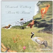 Dominik Eulberg - Flora & Fauna Traum Schallplatten TRAUM V53